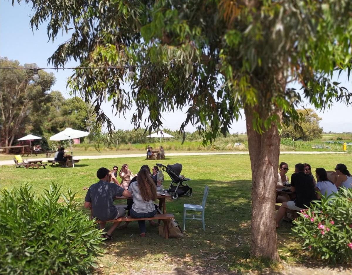 """פסטיבל בירה עם כנפיים במשק מלמד בכפר הנגיד. צילום: יח""""צ"""