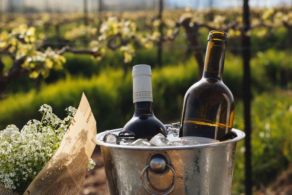"""יינות יקב ברבדו. צילום: יח""""צ"""