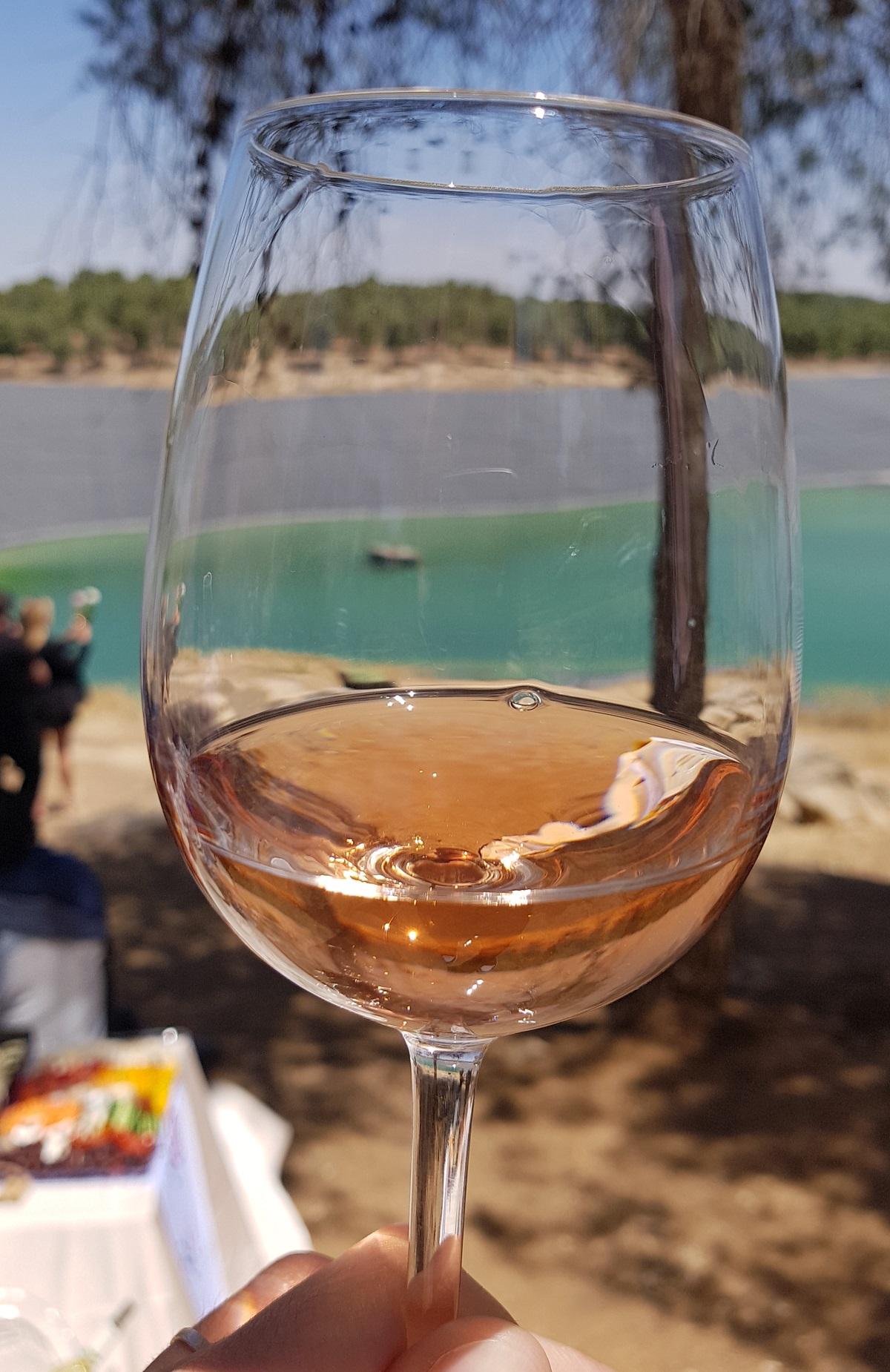 עצירת יין. 'דרום רוזה' על גדת מאגר יתיר. צילום: מגזין שותים