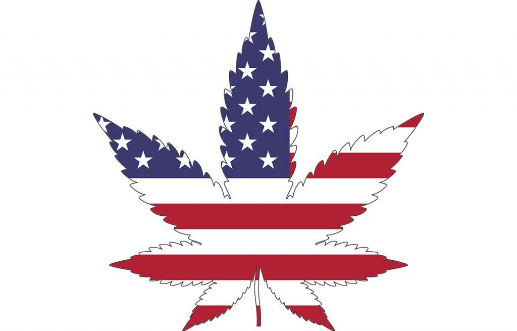 """דגל ארה""""ב על עלה קנאביס"""