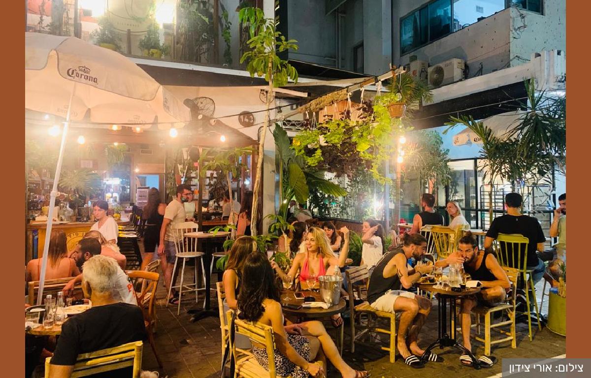 אוזן פיל: בר-משתלה-בית קפה בדיזנגוף תל אביב. צילום: אורי צידון