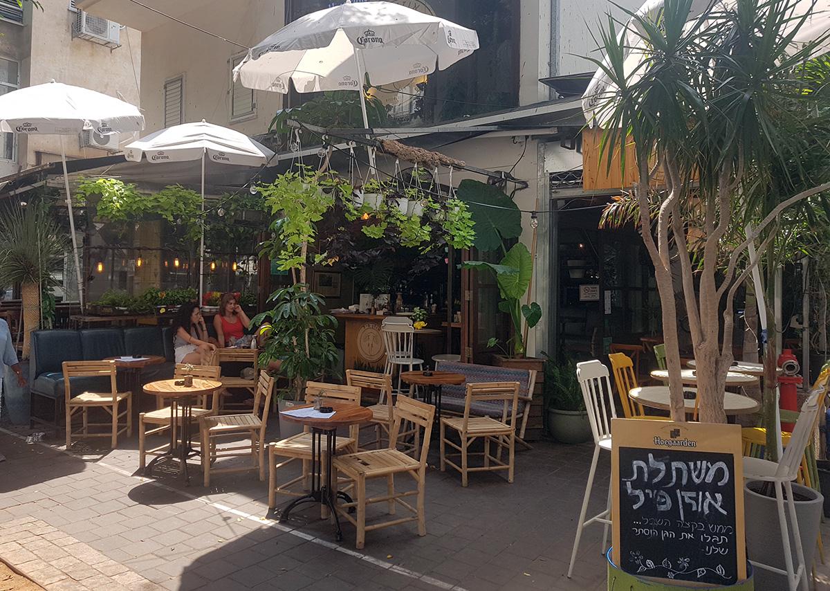 אוזן פיל ברחוב דיזנגוף בתל אביב. צילום: מגזין שותים