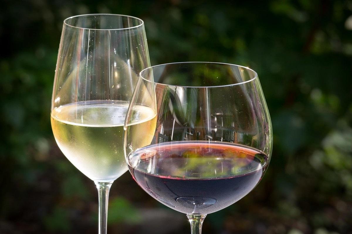 כוס יין לבן וכוס יין אדום