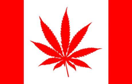מהיום הקנאביס בקנדה חוקי לגמרי