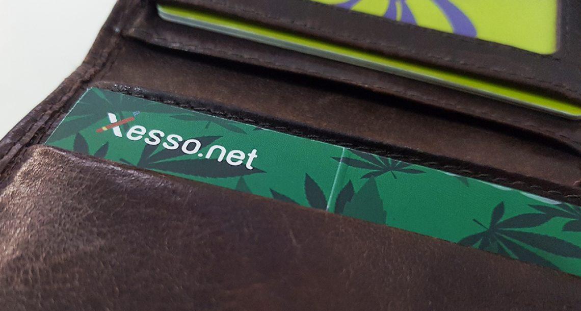 קססונת היא קססונית שלא יוצאת לנו מהארנק – ביקורת מוצר